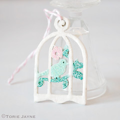 Mini glittered bird cages