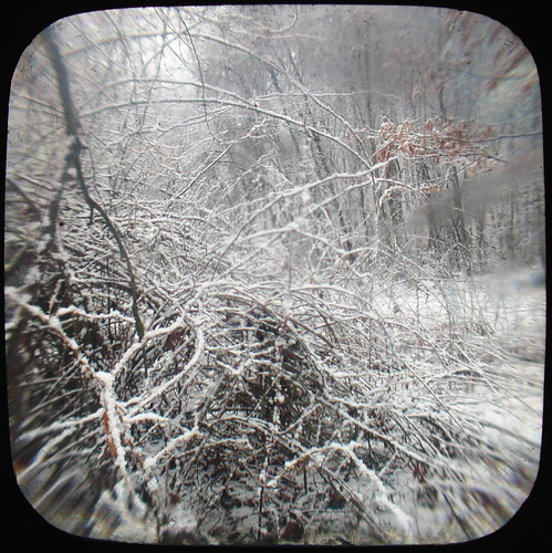 Winter Field Edge: Ttv by john_fobes