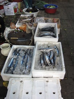 Selling mackerel in the street