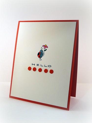 Hello Ladybug