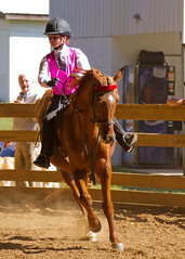 rodeo(0.0), western riding(0.0), western pleasure(0.0), equestrian vaulting(0.0), barrel racing(0.0), animal sports(1.0), equestrianism(1.0), english riding(1.0), equestrian sport(1.0), sports(1.0), horse(1.0), jockey(1.0),