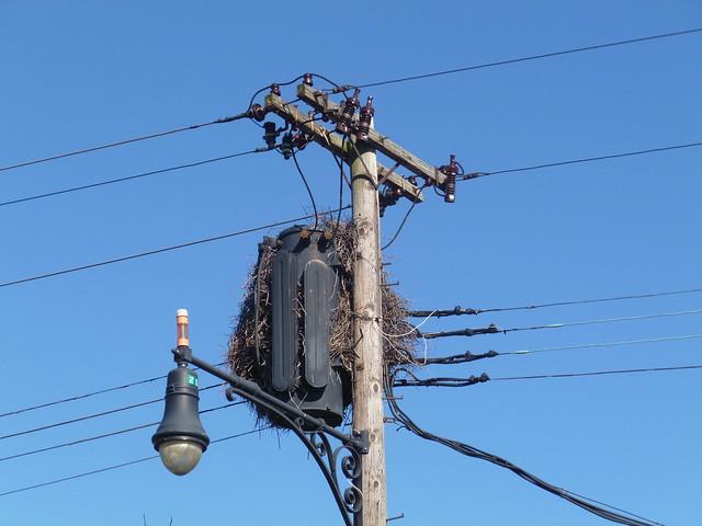 Old 3-ph pole transformer | Flickr - Photo Sharing!
