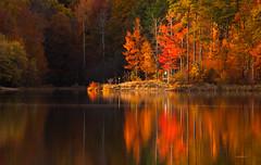 Fall Reflections on Lake Crabtree