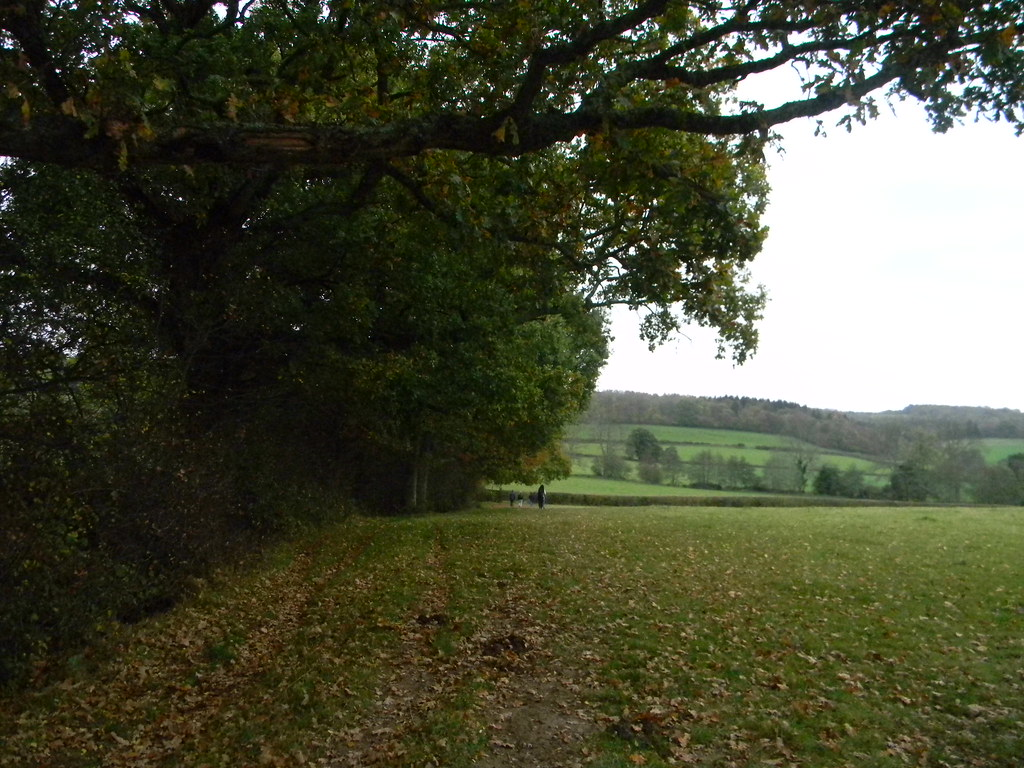 View near Burwash Stonegate to Robertsbridge