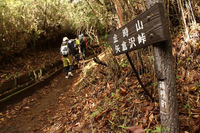 20111112_金時山_0012