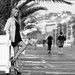 Promenade des Anglais, Nice, 06, PACA, France, Europe, Terre, Système solaire [Explore] by Bruno French Riviera