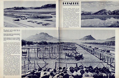 Panorama, nº8, Junho 1975 - 27
