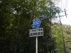 県道300号