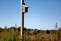 Indian Ladder Farms - Altamont, NY - 2010, Oct - 05.jpg by sebastien.barre
