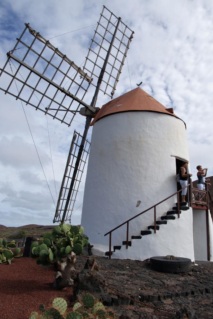 Kakteengarten - Mühle