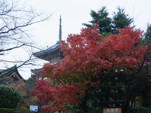 清水寺 kiyomizu x S100