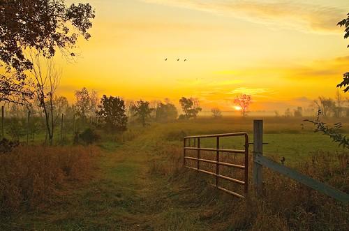 usa sunrise gates swamp marsh sandhillcranes marshmorning johnhenrygremmer wisconsinmorning