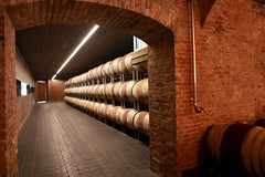 wine(0.0), wine cellar(1.0), wood(1.0), barrel(1.0), winery(1.0), interior design(1.0),