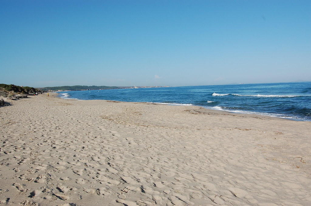La spiaggia delle mie piante