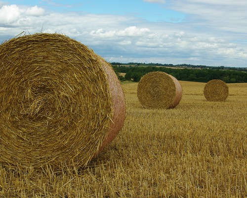 20110814-23_Hay bales_Rotoballe - Lawford Heath by gary.hadden