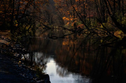 autumn trees orange creek dark dead stream shadows path explore wv fallen explored mystyerious