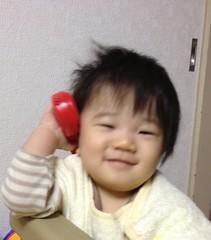 もしもし!起きたてとらちゃん(2011/11/16)