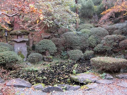 岩松院~蛙合戦の池 by Poran111