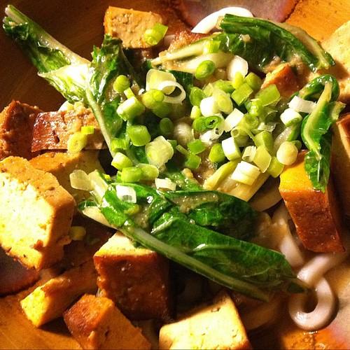 Bok Choy tofu bowl