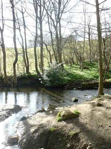 park mill dam