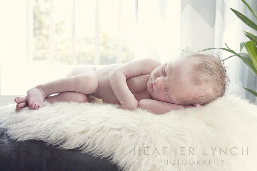 HeatherLynchPhotographyFST5