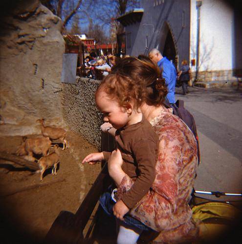 Lara&Zoo_0028