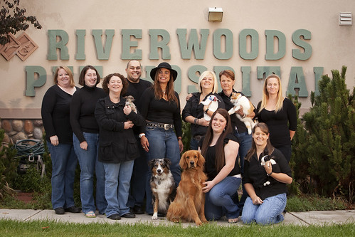 Riverwoods Pet Hospital
