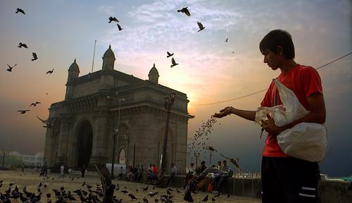 morning boy monument sunrise dawn peace feeding pigeons mumbai gatewayofindia southmumbai 2611 apollobunder