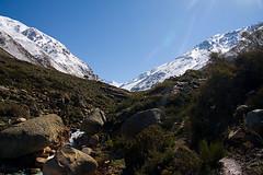 Yerba Loca - Santiago chile
