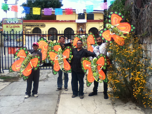 In November the Butterflies return to Oaxaca 10.2011