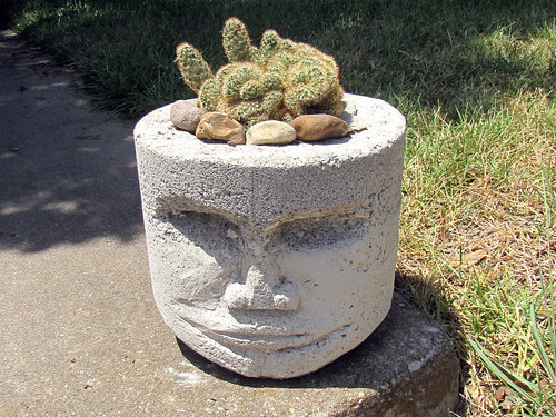 Pothead with brain cactus, 4