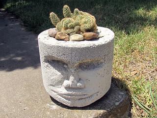 Pothead with brain cactus, 4