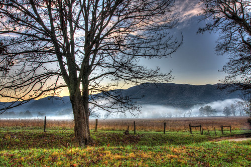 morning autumn fall field fog sunrise canon fence early day tennessee row smokies 1740mm smokymountains cadescove gsmnp hyattlane f4l napg 40d pwfall