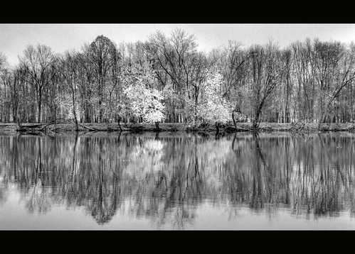 bw oneaday river ada blackwhite michigan photoaday infrared 365 grandriver hdr pictureaday adamichigan project365