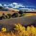 autunno in Toscana: bello viverlo di nuovo