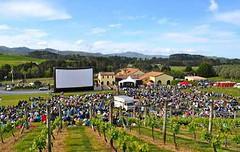 Mendoza: Ciclo Vino el Cine continúa en Renacer y Norton