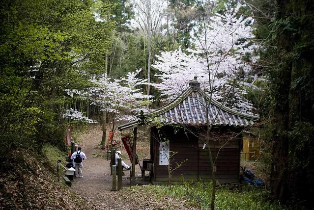 Shikoku17 Walk Araund Shikoku Tomokazu Murakami By