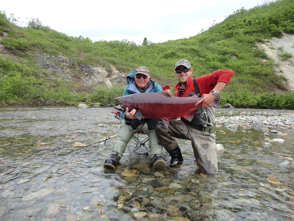 Alaska fly fishing lodge talaheim lodge alaska for Alaskan fishing trips