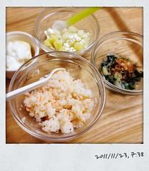とらちゃんの朝御飯(2011/11/23)