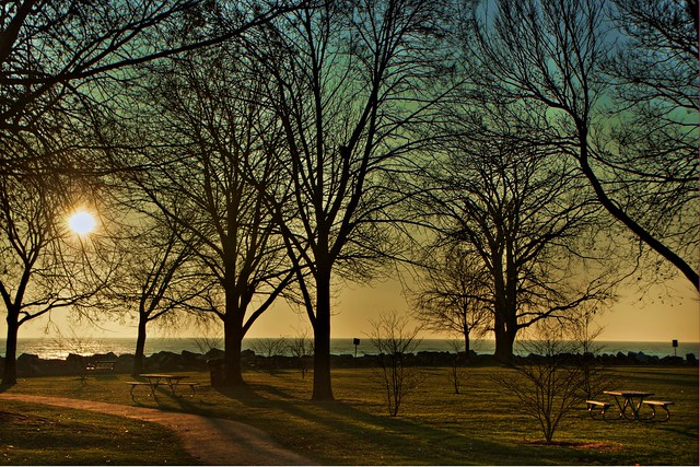 hdr evanston, silhouetted trees and sunrise, dempster street beach, november 25, 2011 10-3 4x6