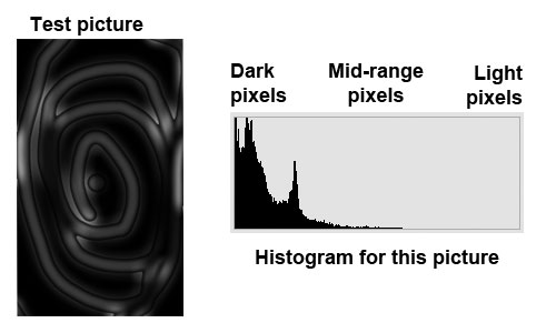 Picture showing a dark overall spread of pixels