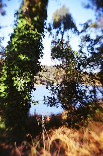 santa film portugal 35mm lens landscape diy reflex lomo lomography twin dao scd waterscape twinlens comba dão ilustrarportugal recesky