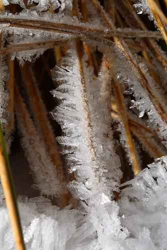 winter newzealand snow ice canon crystal canterbury dslr canonef100mmf28usmmacro 400d 430exii