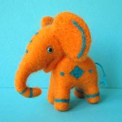 O czym myślą słoniątka?