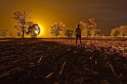 fire gas flame tűz láng mező kukorica gáz