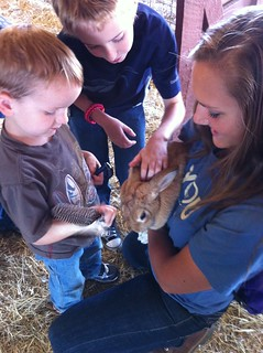5 Best Family Vacations For Animal Lovers