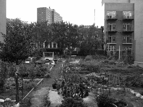 Greene Garden
