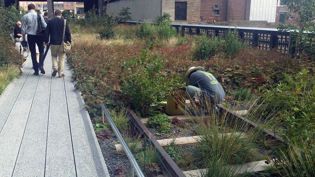 Volunteer working - High Line Park
