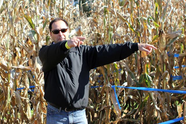 Corn Maze Traffic Cop