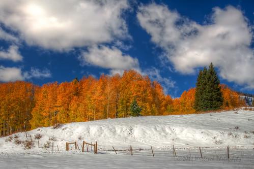 autumn trees orange snow mountains yellow pine clouds contrast fence landscape colorado cloudy aspen cumbres